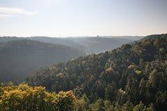 Jesienni lasy wewnątrz w Kokorinsko krajobrazu terenie w republika czech przy rankiem Obraz Royalty Free