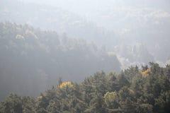 Jesienni lasy wewnątrz w Kokorinsko krajobrazu terenie w republika czech przy rankiem Obraz Stock