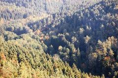 Jesienni lasy wewnątrz w Kokorinsko krajobrazu terenie w republika czech przy rankiem Zdjęcie Royalty Free