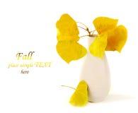 jesienni liść Zdjęcie Royalty Free