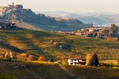 Jesienni wzgórza i winnicy w wieczór Obrazy Royalty Free