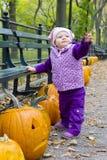 jesienny środkowy dziewczyny trochę park Obrazy Stock