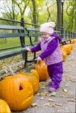 jesienny środkowy dziewczyny trochę park Zdjęcia Royalty Free