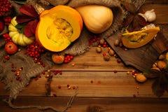 jesienny życie wciąż Obrazy Royalty Free