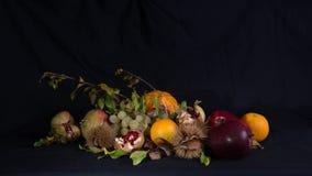 Jesienny życie 1 wciąż zdjęcie stock