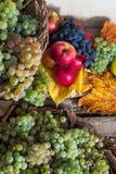 Jesienny życie z owoc i liśćmi na drewnianej bazie wciąż Fotografia Royalty Free
