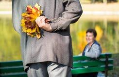 Jesienny bukiet liście Zdjęcia Stock