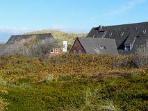 Jesienny diuna krajobraz na wyspie Sylt zdjęcie stock