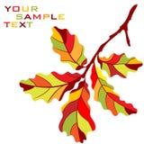 jesienny gałęziasty dąb ilustracja wektor