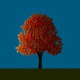 Jesienny klon ilustracji