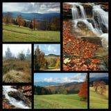 jesienny kolaży wizerunków temat Zdjęcie Stock
