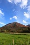 Jesienny kolor Zdjęcie Royalty Free