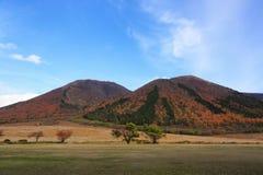 Jesienny kolor Fotografia Royalty Free