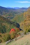 Jesienny krajobraz w Pyrenees Zdjęcia Royalty Free