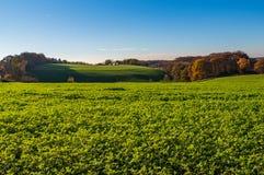 Jesienny krajobraz, widok nad łąkami, pola i las, Essen zdjęcie stock