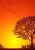 jesienny krajobrazu ilustracja wektor