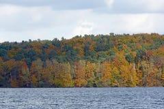 Jesienny las przy Werbellin jeziorną północą Berlin Zdjęcia Stock