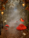 Jesienny las z mgły i czerwieni pieczarkami Zdjęcia Royalty Free