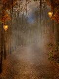 Jesienny lasowy tło ilustracja wektor