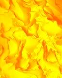 jesienny liść abstrakcyjne Zdjęcia Royalty Free