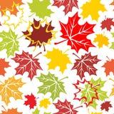 jesienny ornament ilustracji