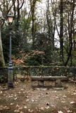 Jesienny park Fotografia Stock