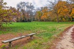 Jesienny park racconigi, Włochy Fotografia Royalty Free