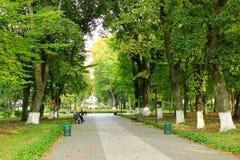 Jesienny park z deptak ścieżką i dużymi drzewami Obraz Stock