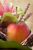 jesienny przygotowania kwiat Obraz Royalty Free