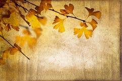 Jesienny rocznika Tło Obrazy Royalty Free