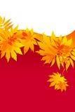 jesienny tło opuszczać czerwień Zdjęcie Royalty Free