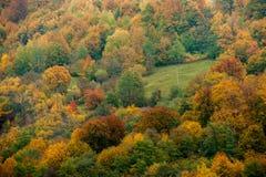 jesienny widok Obrazy Royalty Free