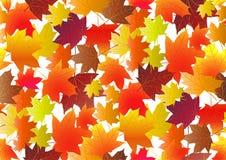 Jesienny wzór z spadków liśćmi klonowymi również zwrócić corel ilustracji wektora royalty ilustracja