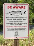 jesiotra szyldowy ostrzeżenie Fotografia Stock