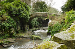 Jesmond Dene stone bridge Royalty Free Stock Photos
