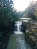 Jesmond do frio do inverno das árvores da cachoeira do inverno Foto de Stock Royalty Free