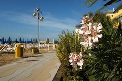 Jesolo. (Ve),Veneto,Italy,Adriatic Sea,a beach Royalty Free Stock Photography