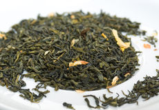 Jessamine green tea,in studio Royalty Free Stock Photo