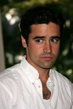 Jesse Bradford Stock Photos