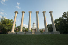 Jesse Hall and Columns. Columns in front of the University of Missouri Administration Building Jesse Hall Stock Photography