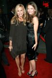 Jessica Collins, Rebecca Gayheart Stock Photos