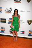 Jessica Lowndes Royalty Free Stock Photography