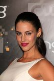 Jessica Lowndes Royalty Free Stock Images