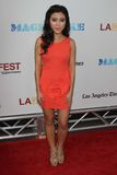 Jessica Lu at the Los Angeles Film Festival Closing Night Gala Premiere  Stock Photo