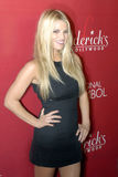 Jessica Simpson on the red carpet. Jessica Simpson appearing on the red carpet in Hollywood Royalty Free Stock Images
