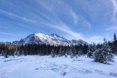 jest całkowicie szczęśliwy i jeśli obraz góry dziękuję zimy są używane w, fotografia royalty free