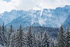 jest całkowicie szczęśliwy i jeśli obraz góry dziękuję zimy są używane w, Zdjęcia Stock