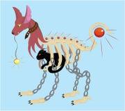 Jest prześladowanym klatkę z czarnym kotem Fotografia Royalty Free