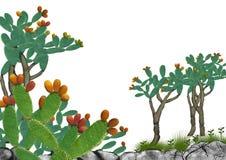 Jest sprzedaje jako bonsai lub normalny typ ilustracja wektor