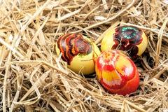 jest Wielkanoc jaj Obraz Royalty Free
